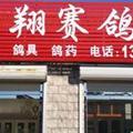 天津武清飞翔赛鸽中心