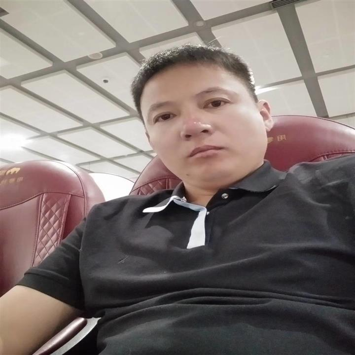辽宁-凯胜赛鸽