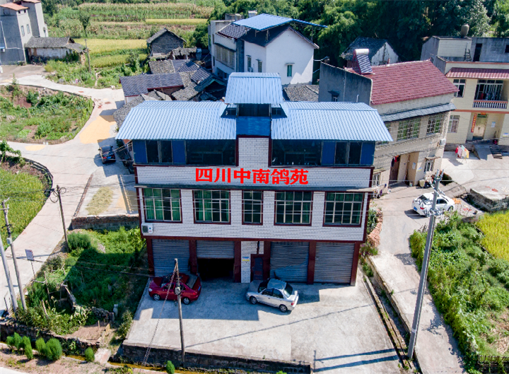 四川中南鸽苑