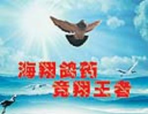 台湾海翔赛鸽保健中心