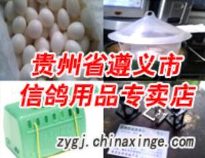 贵州省遵义市信鸽用品专卖店