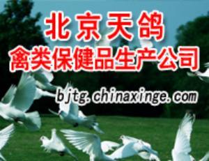 北京天鸽禽类保健品生产公司