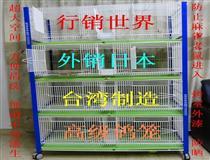台湾宝岛信鸽用品华北经销