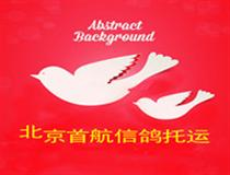 北京首航信鸽运输有限公司