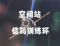 空间站信鸽训练环全国总代理