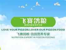 北京飞赛鸽业