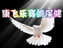 康飞乐赛鸽保健