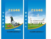 台湾永大鸽业