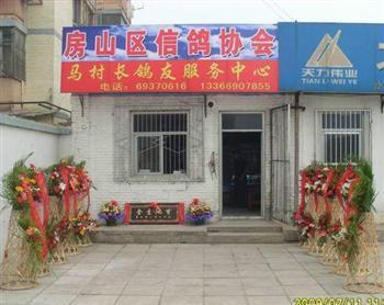 马村长鸽友服务中心