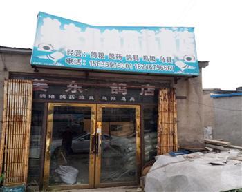 姜东信鸽用品商店
