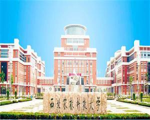 杨凌大西农赛鸽研究所