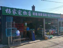 杨家宠物商店
