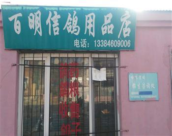 百明信鸽用品店