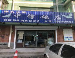 辽宁中信鸽店
