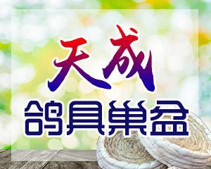 天成鸽具巢盆生产厂家