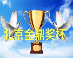 北京金鼎奖杯