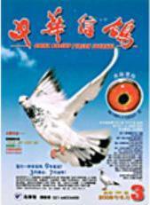 《中华信鸽》杂志