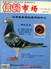 《信鸽市场》杂志社