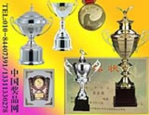 中国奖品网提供奖杯