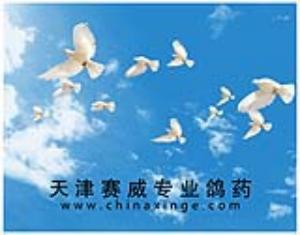 天津赛威专业鸽药