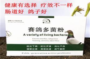 【冠森鸽药】赛鸽多菌粉-肠炎下痢、呕吐厌食、消化不良、缓解应激、清理肠道、调节菌群