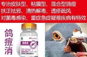 鸽痘消--专治皮肤性、粘膜型、混合型鸽痘