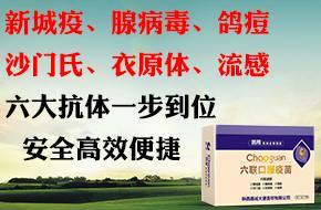 【超冠】六联口服疫苗,六大抗体一步到位,火热销售中,欢迎抢购!
