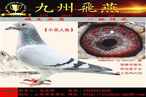 《九州飞燕》经典拍卖