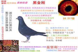 绝世国血李种传奇:中国唯一整系续留