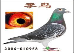 中华国粹――李鸟
