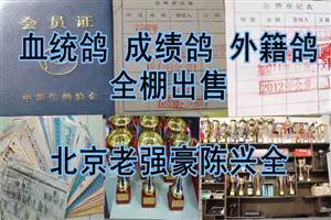 """《最后一期》北京老强豪""""陈兴全""""全棚出售"""