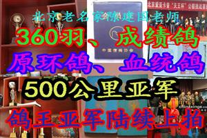 最后一期360羽清棚 清棚《北京名家陈建国老师》