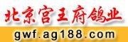 北京宫王府鸽业