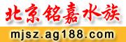 北京�嘉水族