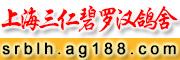 上海三仁碧罗汉鸽舍