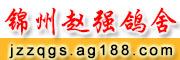锦州赵强鸽舍