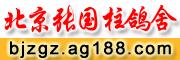 北京张国柱鸽舍