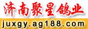 济南聚星鸽业