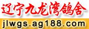 辽宁九龙湾鸽舍