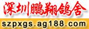 深圳鹏翔鸽舍