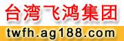 台湾飞鸿集团