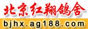 北京红翔鸽舍