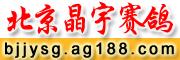 北京晶宇赛鸽