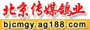 北京传媒鸽业
