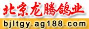 北京龙腾鸽业