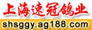 上海速冠鸽业