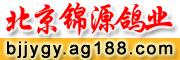 北京锦源鸽业