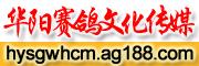华阳赛鸽文化传媒