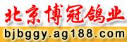 北京博冠鸽业