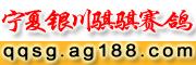 宁夏银川骐骐赛鸽